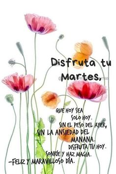 Good Day Quotes, Good Morning Inspirational Quotes, Good Morning Quotes, Serenity Prayer In Spanish, Good Morning In Spanish, Amor Quotes, Life Quotes, Morning Greetings Quotes, Love Phrases