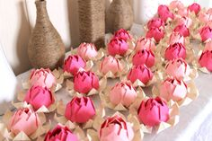 50 Pink Lotus Blossoms