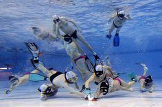 Love UWH Water Polo, Underwater, Hockey, Bikini, Sports, Box, Swimming, Bikini Swimsuit, Hs Sports