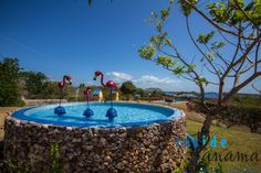 Besides a #wonderful #dream #house, the lot is big enough to build a pool!! http://insidepanamarealestate.com/lot-sale-el-espino-de-san-carlos-panama/?utm_content=buffer6a945&utm_medium=social&utm_source=pinterest.com&utm_campaign=buffer#tab-id-1 #insidepanamarealestate #forsale