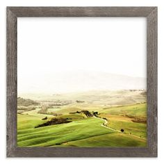 """Orcia"" - Art Print by Molly Goodman in beautiful frame options and a variety of sizes."