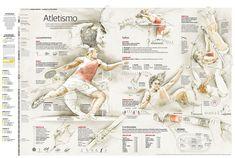 INFOGRAPHIC. London Olympics special coverage. Athletics disciplines / Cobertura especial de los Juegos Olímpicos de Londres. Atletismo -- Authors: J.M.Benítez & Alberto Lucas López