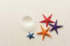 Beach sand + starfish
