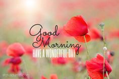 Good morning wishes, have a wonderful day