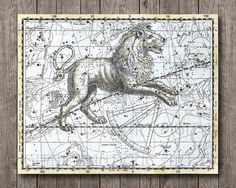 Astronomy Lion Zodiac Signs Horoscope Astrological  Solar System Celestial Charts Universe Maps 8x10 Print Poster INSTANT DOWNLOAD wall art