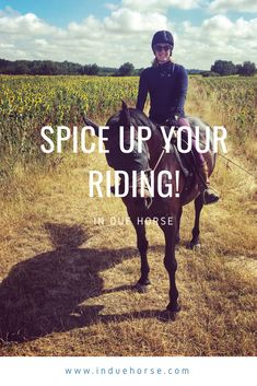 Ponies, Spice Things Up, Equestrian, Training, Group, Fun, Blog, Ideas, Horseback Riding