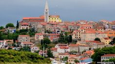 Vrsar, Kroatien  #adriatyk #kroatien #croatia #chorwacja #vrsar #istria #summer
