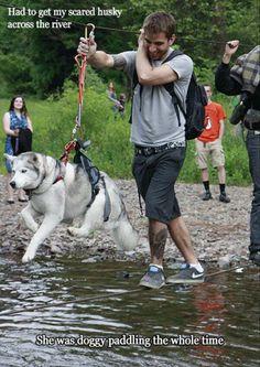 水の怖いハスキーのためにロープを使って川を渡る。その間、空中で一生懸命犬かきをするハスキー  |かわいい動物botさんのついっぷるトレンド画像 - http://tr.twipple.jp/p/dc/121b8e.html