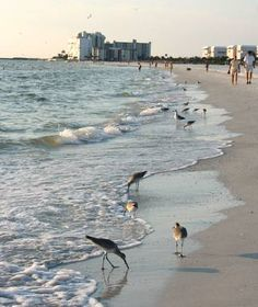 St. Pete Beach, FL, More old Florida than new, this lazy, low-key town on the central west coast of the Sunshine State is blissfully free of party-down revelers and velvet rope VIP rooms.