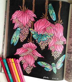 Après une semaine à tourner en rond dans mes mandalas, je trouve enfin un peu d'inspiration #dagdrömmar #hannakarlzon #flower #posca #coloriage #coloriagepouradulte #coloriageantistress #arttherapy #polychromos #adultcoloringbook #piloute_gribouille