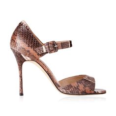Manolo Blahnik Clado ankle strap leather sandal brown snakeskin