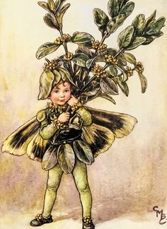 A personal favourite from my Etsy shop https://www.etsy.com/uk/listing/536112924/the-flower-fairies-the-box-tree-fairy