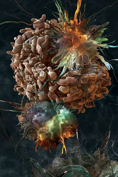 a microscopic view of apoptosis (a normal process to eliminate DNA-damaged, superfluous, or unwanted cells) AS&K Visual Science - Medical Illustration & Animation on Behance Medical Science, Science Art, Science And Nature, Medical Art, Science Geek, Medical Humor, Science Photos, The Human Body, Science Illustration