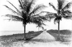Looking down Ocean Drive - Miami Beach, Florida 1924