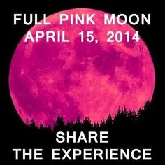 Full Pink Moon with the lunar eclipse  15 Avril 2014
