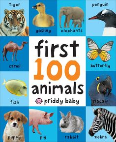 Download First 100 Animals Ebook Pdf