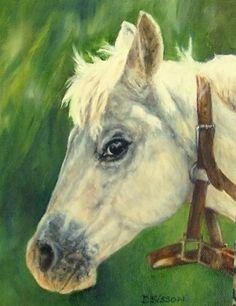 Half-Haltered Oil Painting Horse Art Pet Portrait Country Western, painting by artist Debra Sisson