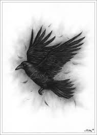 flying raven drawing - Google Search