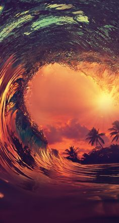 Wave, sun, palm wallpapers