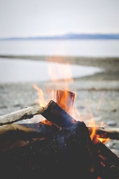 Fire  #wild #camping