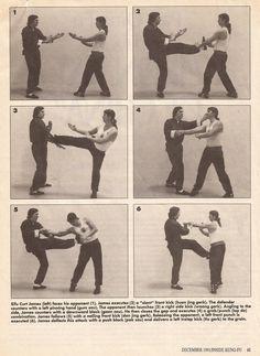 Secret Wing Chun Leg Maneuvers - Curt James0003