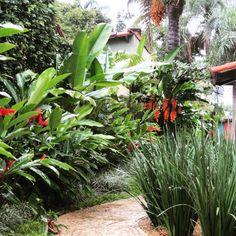 Bem tropical! #rosalbapaisagismo #paisagismo #paisajismo #landscapedesigner #landscapearchitecture #landscaping #庭 #tuin #garten #باغ #花園 #حديقة #κήπος #сад #garden #giardino #jardim #jardin #tropical #path #caminho #pedras #stone #heliconia #alpinia #palmtree #palm #palmeira