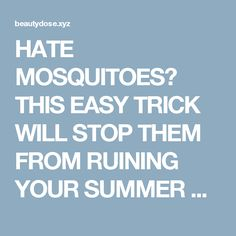HATE MOSQUITOES? THIS EASY TRICK WILL STOP THEM FROM RUINING YOUR SUMMER NIGHTS!  |  Fitness and Beauty Dose