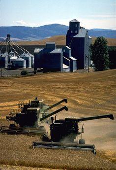 a farm in the Palouse region - Whitman County, Washington Country Farm, Country Life, Agriculture Photos, John Deere Combine, John Deere Tractors, Big Tractors, Farm Day, Farm Business, Farm Photo