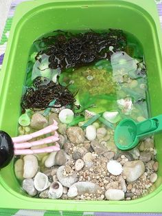 Beach in a Box sensory tub! #beach #sensoryplay #baby #toddler #preschooler #sand #shells #seaweed #rocks #saltwater