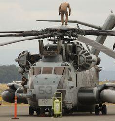 Pre flighting the CH-53E Super Stallion