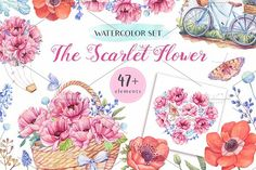 The Scarlet Flower by Sunny Illustrations on @creativemarket
