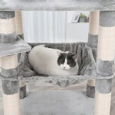 Tucker Murphy Pet Byer Multi-Level Cat Tree or Condo Colour: Light Grey Cat Tree Condo, Cat Condo, Small Kittens, Wood Cat, Cat Cave, Sisal Rope, Cat Scratching Post, Cat Sleeping, Cozy Place