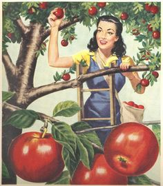 vintage pinup apple pie crust 1948 advertisement. $12.95, via Etsy.