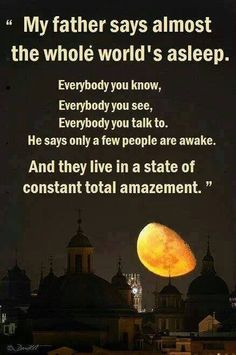 The whole world is asleep. But it's bigger than we think-more and more people are waking up. Keep spreading the love people! Fathers Say, My Father, Joe Versus The Volcano, Spiritus, Soul Searching, Mind Body Soul, Spiritual Awakening, Spiritual Wisdom, Movie Quotes
