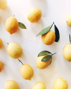 "theglitterguide:  ""When life gives you lemons…  Feeling totally inspired by everything lemon right now. Thanks, California (from our own tree). Also, check out our snapchat (glitterguide) to see some stuff we're doing with them today. #acolorstory..."