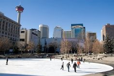 Get into the holiday spirit with festive activities in and around Calgary. Polar Express Train Ride, Mystery Dinner Theater, Sunshine Village, Outdoor Skating, Fairmont Chateau Lake Louise, Best Christmas Lights, Visit Santa, Recreational Activities, Local Events