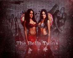 bella twins wwe events  | Bella Twins Wallpaper