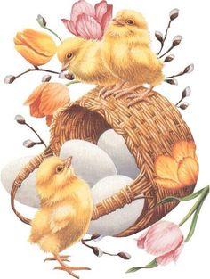 images of tube easter chicks Easter Art, Easter Crafts, Arte Do Galo, Easter Wishes, Easter Pictures, Easter Parade, Easter Printables, Easter Celebration, Easter Holidays