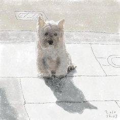 Shozo Ozaki white westie dog painting