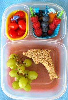 I packed a dolphin sandwich along with lots of snacking fruit & veggies.Green grapes, grape tomatoes with a dolphin pick.Raspberries, blueberries, mangoes, prunes and dried apricots on picks.