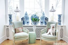 Blue and white AND an adorable pup? This room has it all!