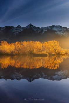 Glenorchy Lagoon, New Zealand Golden Lagoon by Dee-T