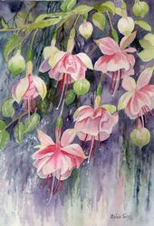 Gallery of Paintings and Cards - SylviaTwiss