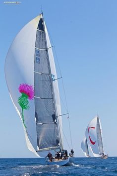 Wally 80' Ryokan 2 sailing yacht - Seatech Marine Products  Daily Watermakers