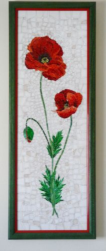 poppy in a frame