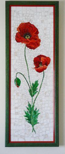 poppy in a frame
