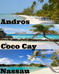 Andros, Coco Cay, and Nassau are just a few beautiful regions of The Bahamas. Fore more of paradise, visit theculturetrip.com