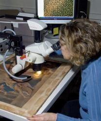 Paper Conservator Joan Irving examines a print under the microscope