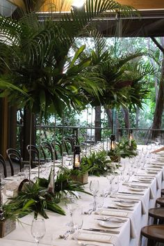 wedding at the melbourne zoo rainforrest room. - wedding at the melbourne zoo rainforrest room. Bali Wedding, Wedding Table, Wedding Ceremony, Wedding Ideas, Melbourne Zoo, Melbourne Wedding, Reception Rooms, Reception Ideas, Event Decor