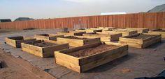 Joy Blooms-Building Jan's Raised Bed Garden
